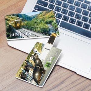 Flash Drives Credit Card Flash Drive 4GB 4gb