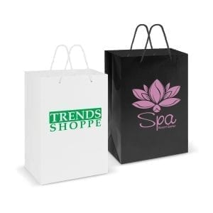 Gift Bags Laminated Carry Bag – Large -