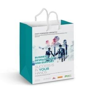 "Gift Bags Medium Laminated Paper Carry Bag aEUR"" Full Colour aEUR"""